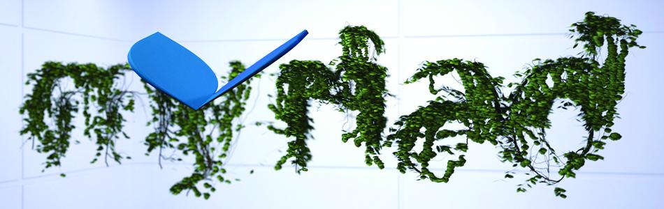 myriad_ivy1